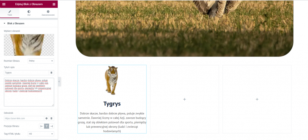blok z obrazem jeden wordpress elementor