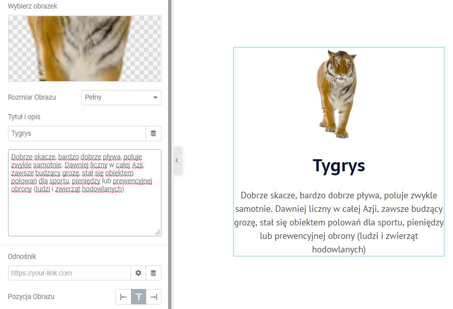 blok z obrazem link wordpress elementor