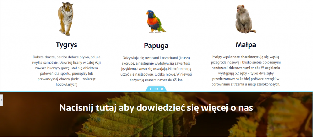 nakladka tla efekt elementor wordpress