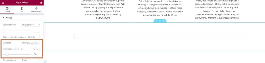 nowa sekcja elementor wordpress